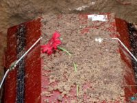 Soil on coffin