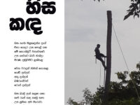 Photo and poem by Ajith Perakum Jayasinghe